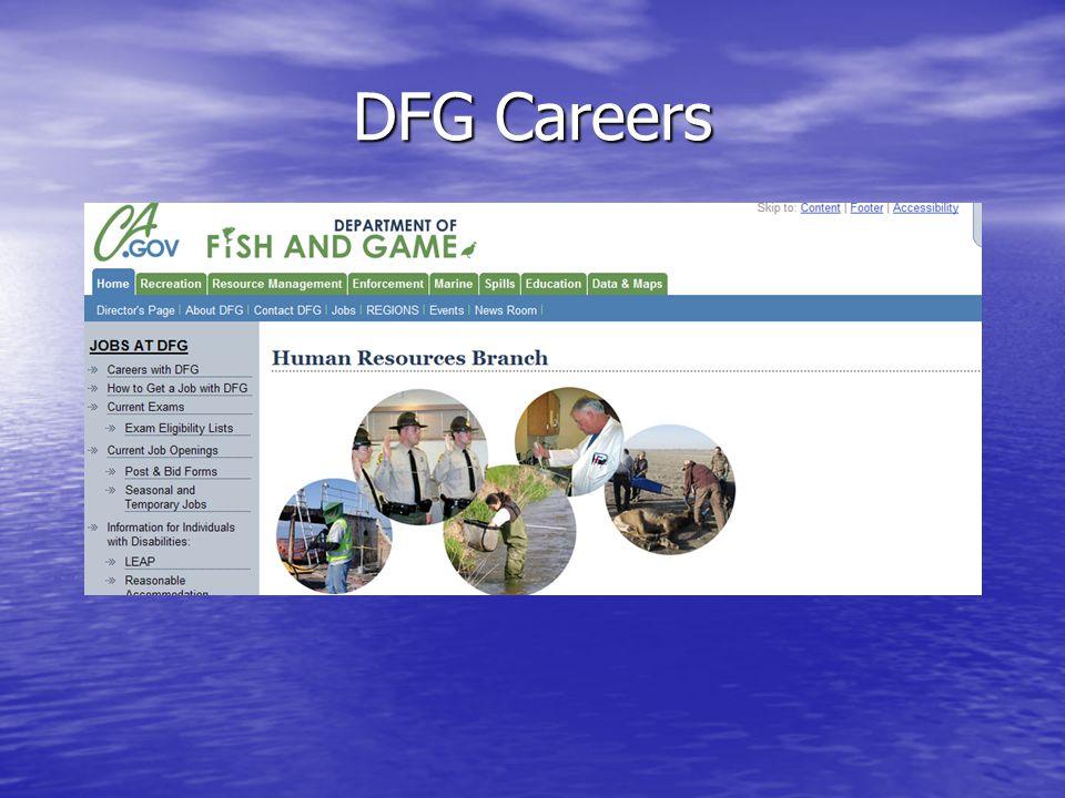 DFG Careers