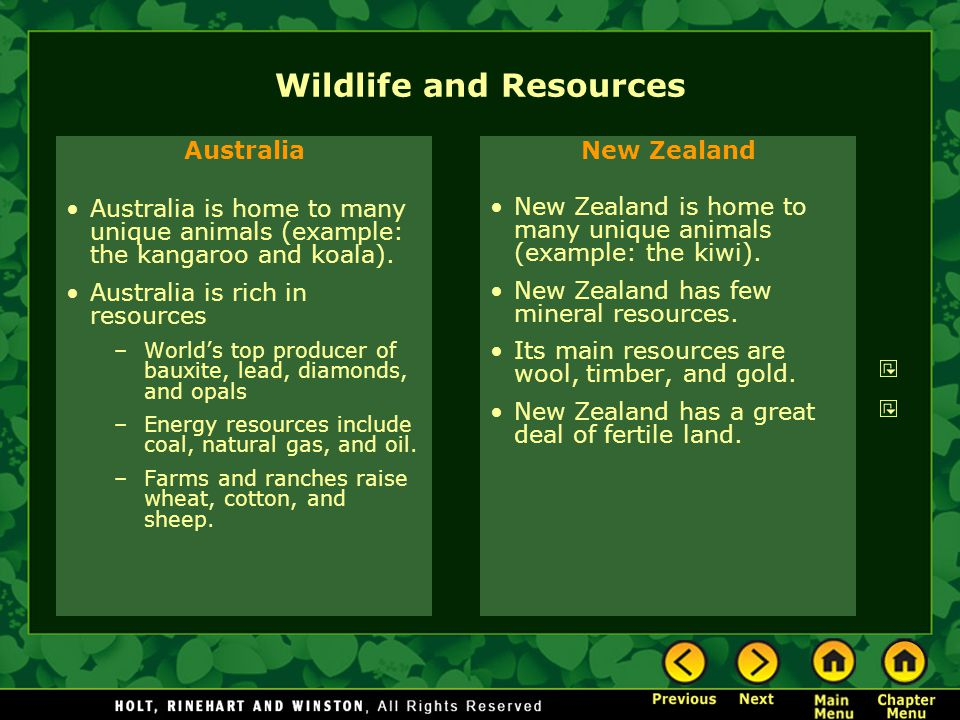 Wildlife and Resources Australia Australia is home to many unique animals (example: the kangaroo and koala).