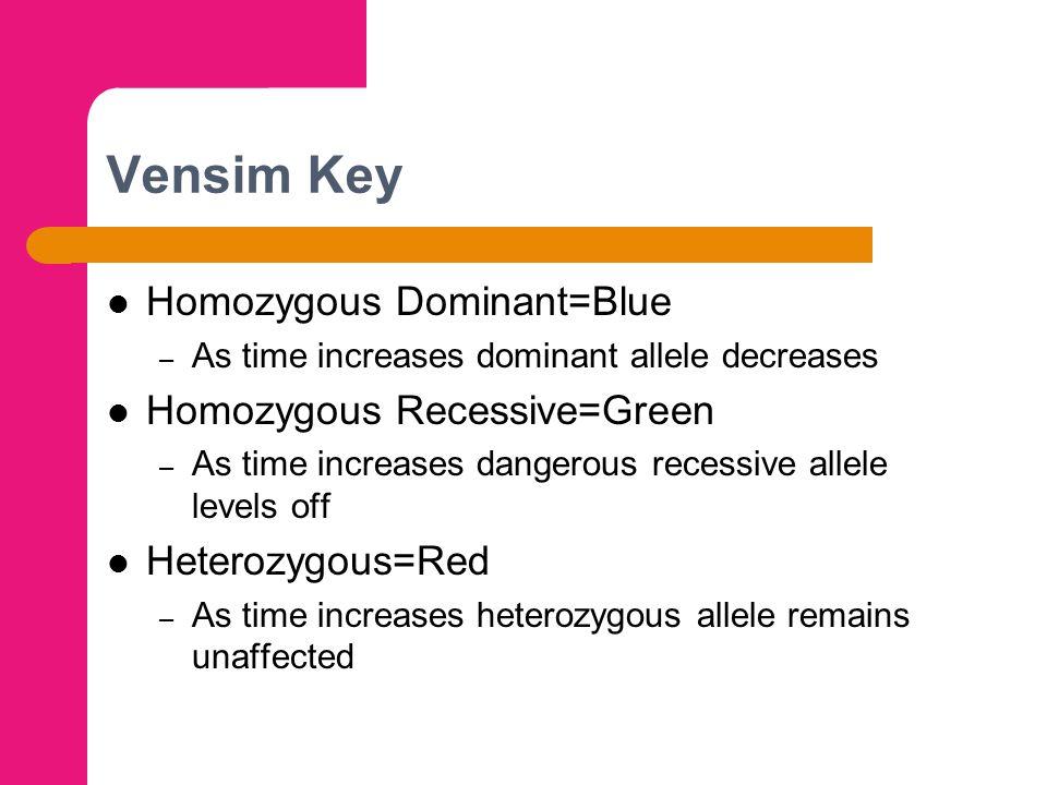 Vensim Key Homozygous Dominant=Blue – As time increases dominant allele decreases Homozygous Recessive=Green – As time increases dangerous recessive allele levels off Heterozygous=Red – As time increases heterozygous allele remains unaffected