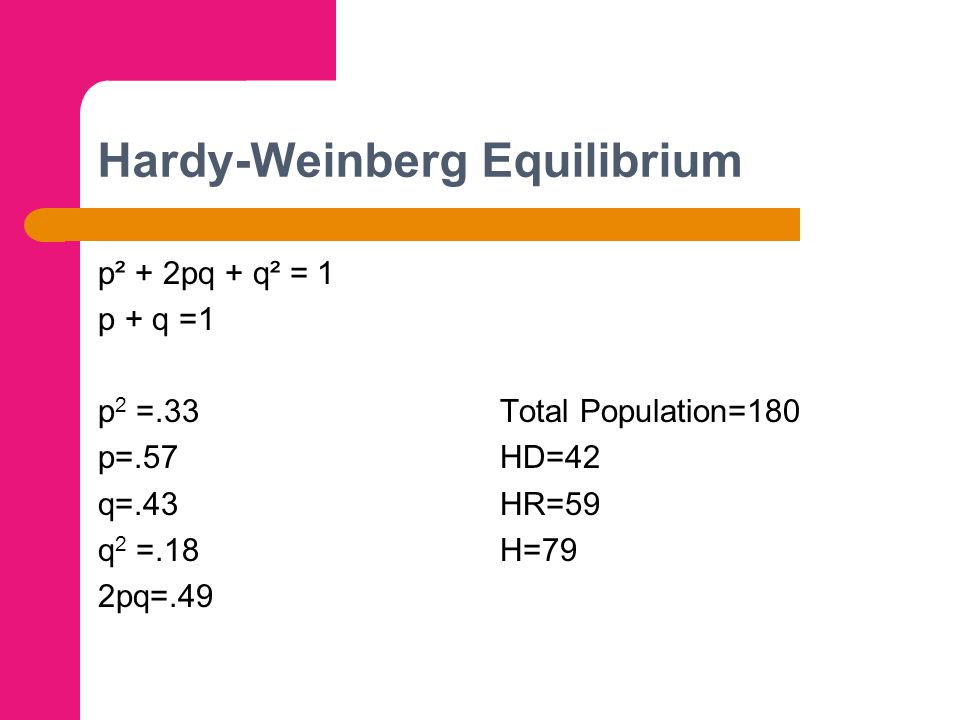 Hardy-Weinberg Equilibrium p² + 2pq + q² = 1 p + q =1 p 2 =.33 Total Population=180 p=.57 HD=42 q=.43 HR=59 q 2 =.18 H=79 2pq=.49