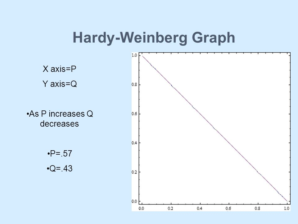 Hardy-Weinberg Graph X axis=P Y axis=Q As P increases Q decreases P=.57 Q=.43