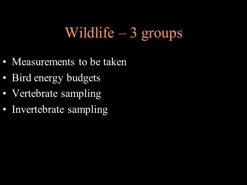 Wildlife – 3 groups Measurements to be taken Bird energy budgets Vertebrate sampling Invertebrate sampling