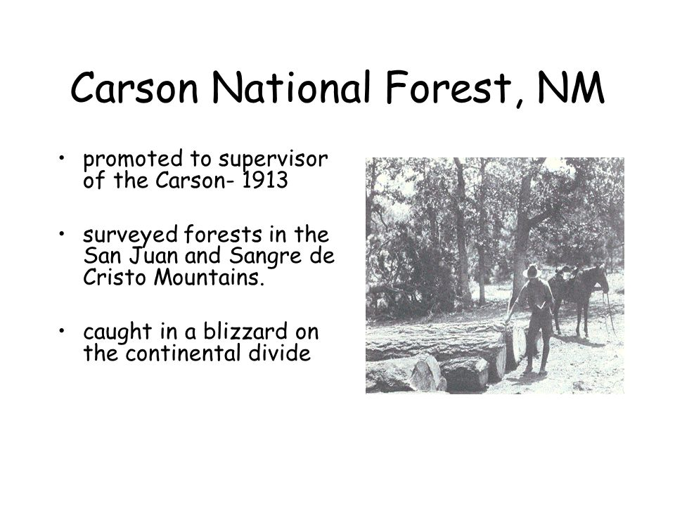 Carson National Forest, NM promoted to supervisor of the Carson- 1913 surveyed forests in the San Juan and Sangre de Cristo Mountains.