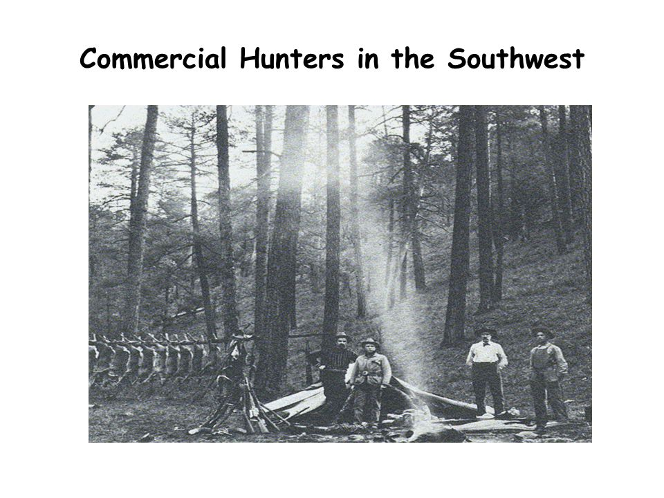 Commercial Hunters in the Southwest