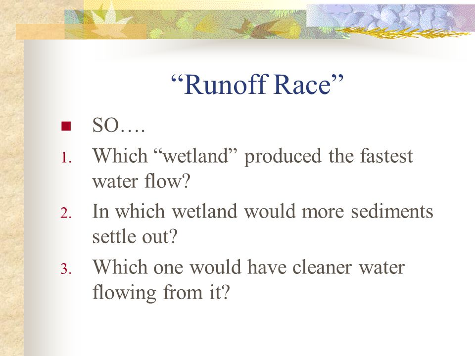 Runoff Race SO…. 1. Which wetland produced the fastest water flow.