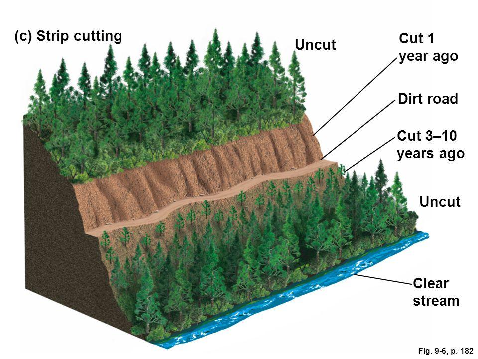 Cut 1 year ago (c) Strip cutting Uncut Clear stream Uncut Cut 3–10 years ago Dirt road Fig. 9-6, p. 182