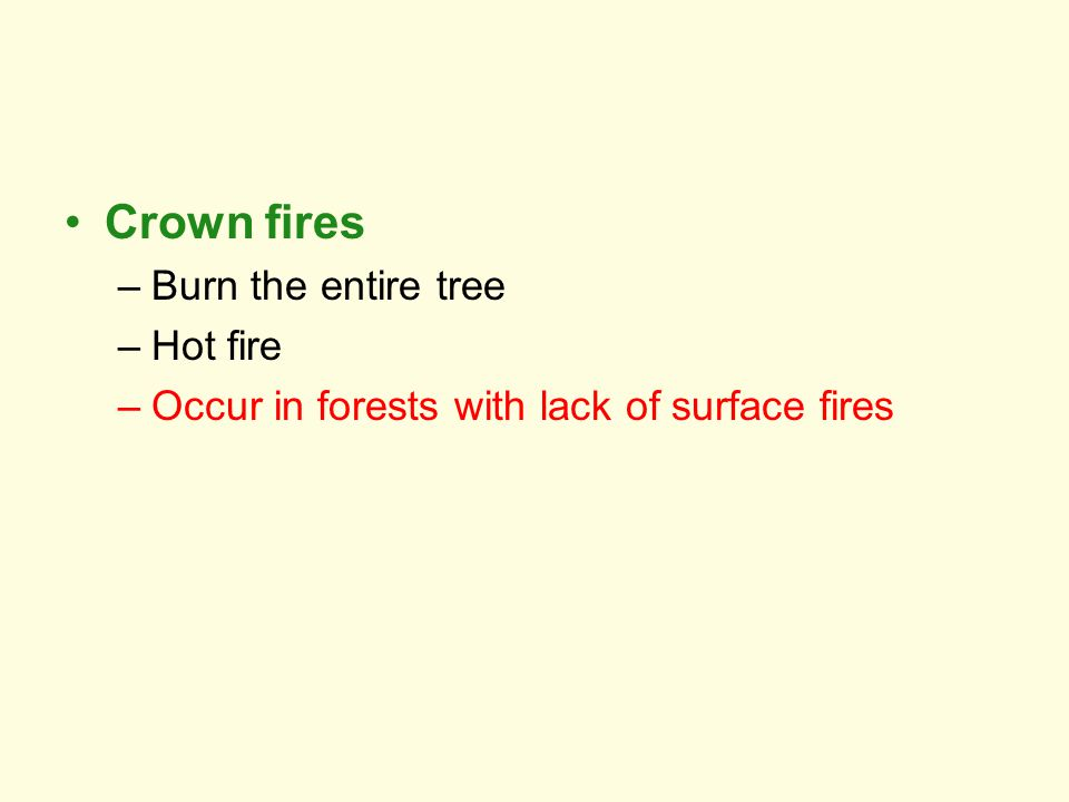 Crown fires –Burn the entire tree –Hot fire –Occur in forests with lack of surface fires