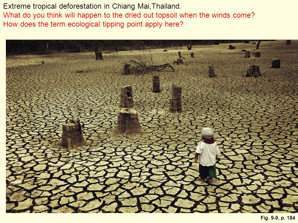 Fig. 9-9, p. 184 Extreme tropical deforestation in Chiang Mai,Thailand. What do you think will happen to the dried out topsoil when the winds come? Ho