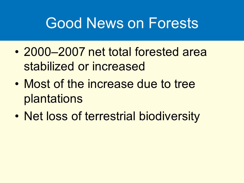 Good News on Forests 2000–2007 net total forested area stabilized or increased Most of the increase due to tree plantations Net loss of terrestrial bi