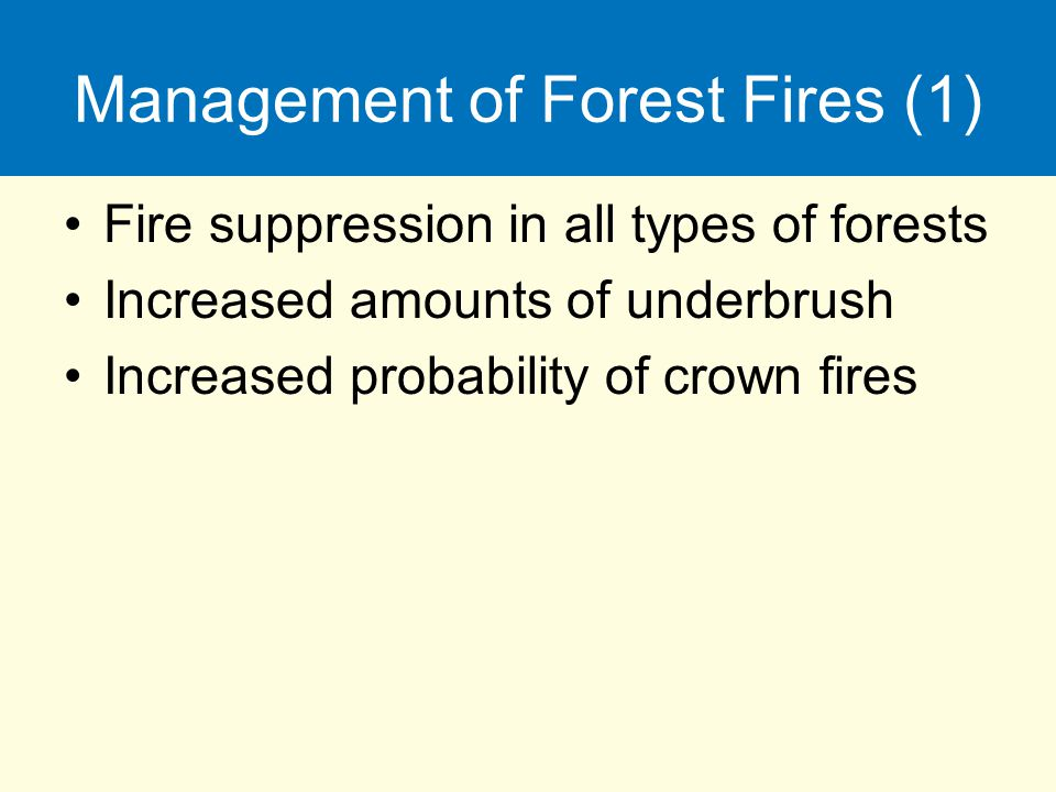 Management of Forest Fires (1) Fire suppression in all types of forests Increased amounts of underbrush Increased probability of crown fires