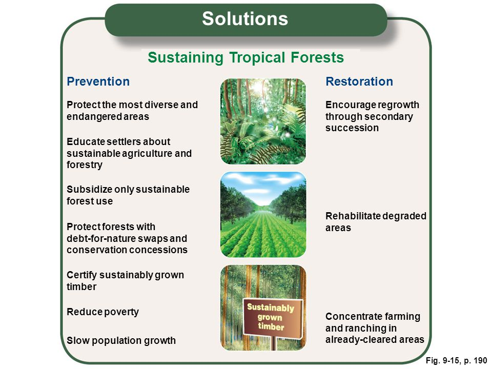 Fig. 9-15, p. 190 Sustaining Tropical Forests Protect the most diverse and endangered areas Educate settlers about sustainable agriculture and forestr