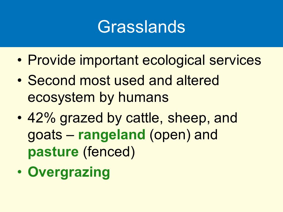 Grasslands Provide important ecological services Second most used and altered ecosystem by humans 42% grazed by cattle, sheep, and goats – rangeland (