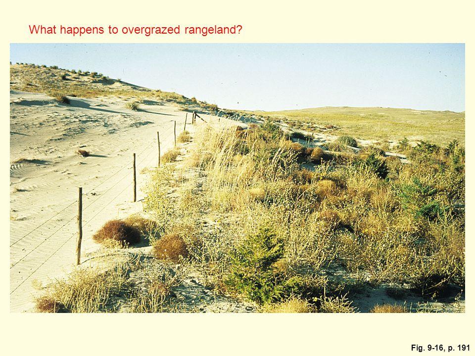 Fig. 9-16, p. 191 What happens to overgrazed rangeland?