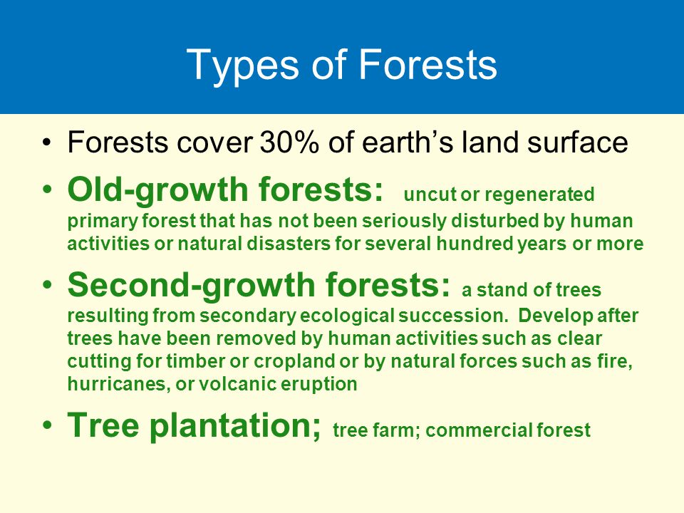 Types of Forests Forests cover 30% of earth's land surface Old-growth forests: uncut or regenerated primary forest that has not been seriously disturb
