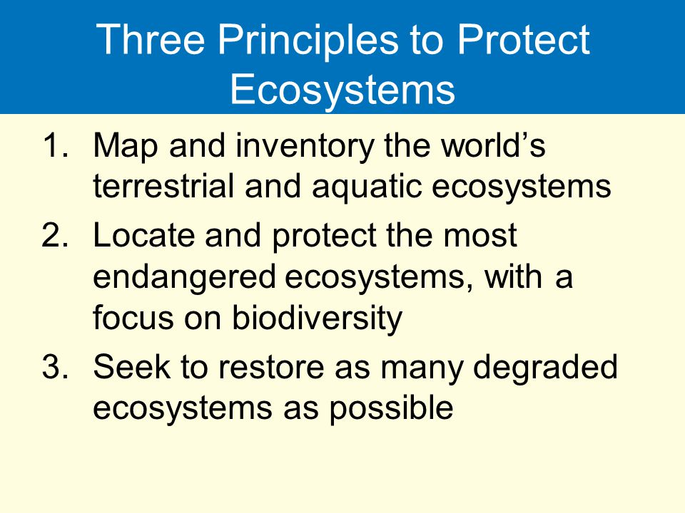 Three Principles to Protect Ecosystems 1.Map and inventory the world's terrestrial and aquatic ecosystems 2.Locate and protect the most endangered eco