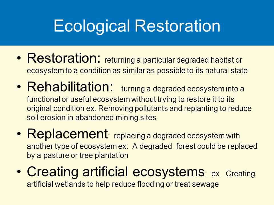 Ecological Restoration Restoration: returning a particular degraded habitat or ecosystem to a condition as similar as possible to its natural state Re