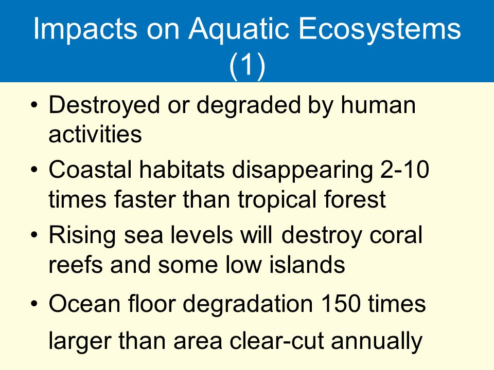 Impacts on Aquatic Ecosystems (1) Destroyed or degraded by human activities Coastal habitats disappearing 2-10 times faster than tropical forest Risin