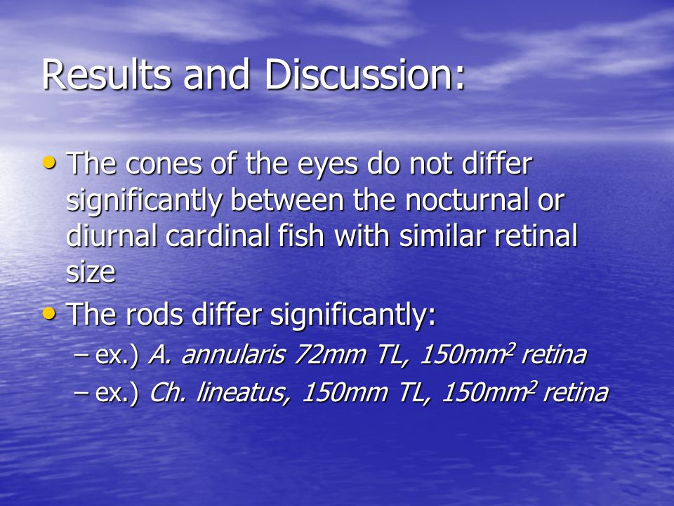 Results and Discussion: The cones of the eyes do not differ significantly between the nocturnal or diurnal cardinal fish with similar retinal size The cones of the eyes do not differ significantly between the nocturnal or diurnal cardinal fish with similar retinal size The rods differ significantly: The rods differ significantly: –ex.) A.