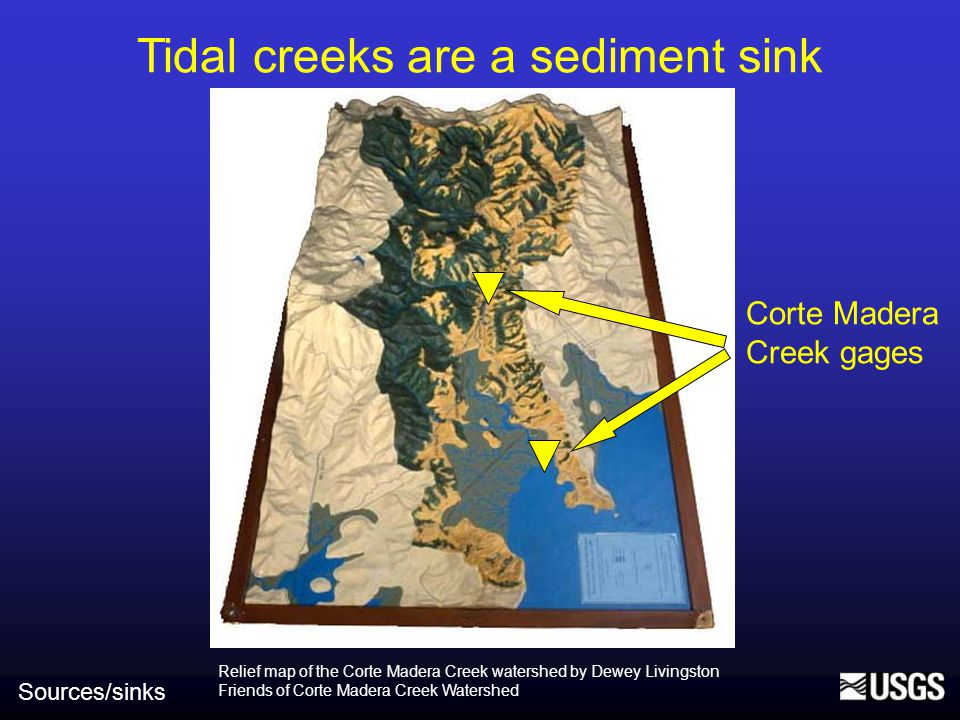 Tidal creeks are a sediment sink Sources/sinks Relief map of the Corte Madera Creek watershed by Dewey Livingston Friends of Corte Madera Creek Watershed Corte Madera Creek gages