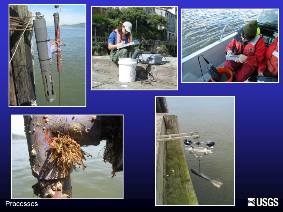Freshwater sediment is flocculated No concentration effect observed Larger flocs settled at slack tide, sand in flocs Floc settling velocities Processes Slack tide