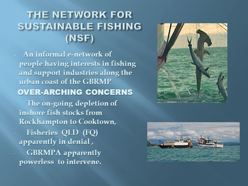 An informal e-network of people having interests in fishing and support industries along the urban coast of the GBRMP - An informal e-network of people having interests in fishing and support industries along the urban coast of the GBRMP OVER-ARCHING CONCERNS - The on-going depletion of inshore fish stocks from Rockhampton to Cooktown, - Fisheries QLD (FQ) apparently in denial, - GBRMPA apparently powerless to intervene.