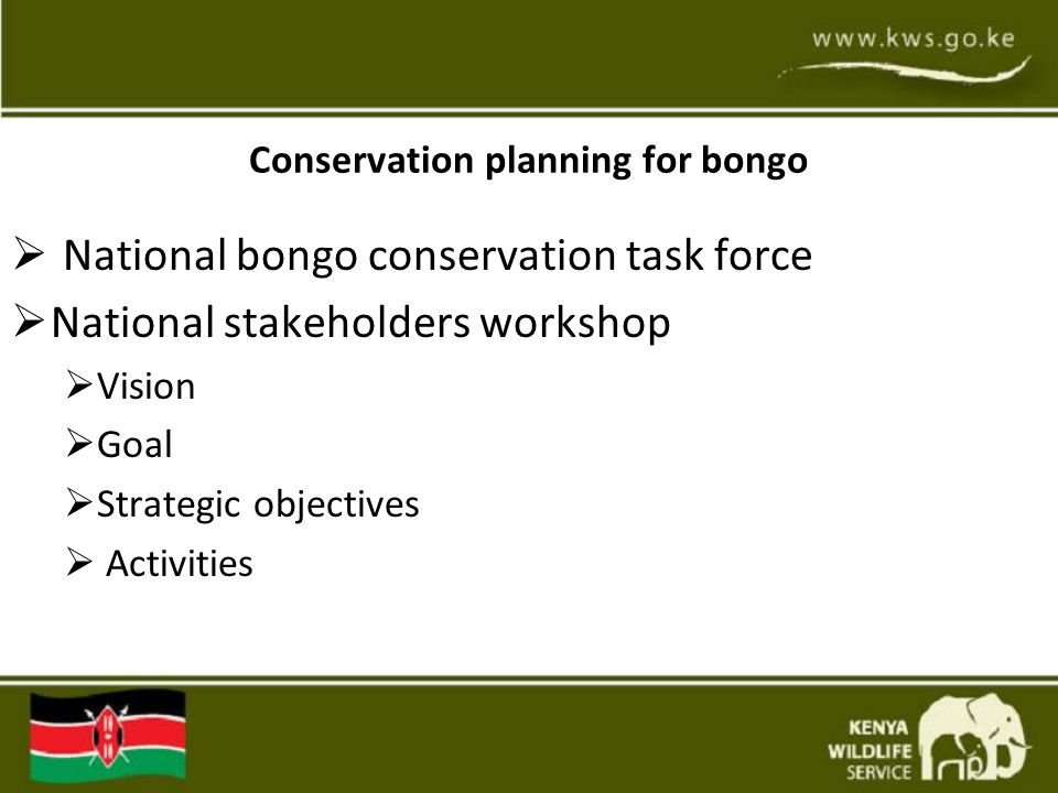 Conservation planning for bongo  National bongo conservation task force  National stakeholders workshop  Vision  Goal  Strategic objectives  Activities