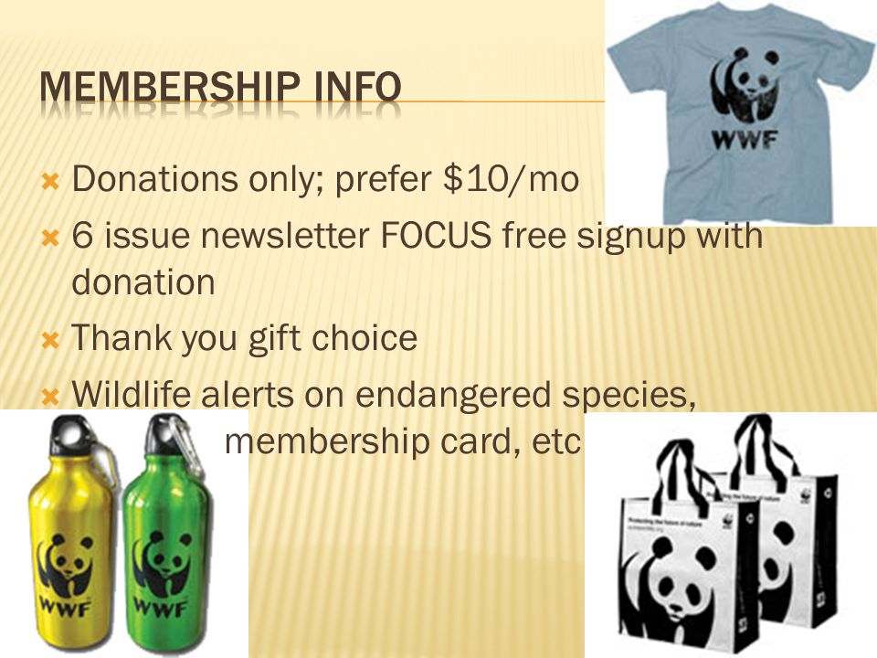  Donations only; prefer $10/mo  6 issue newsletter FOCUS free signup with donation  Thank you gift choice  Wildlife alerts on endangered species, membership card, etc