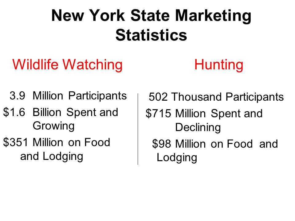New York State Marketing Statistics Wildlife Watching 3.9Million Participants $1.6Billion Spent and Growing $351Million on Food and Lodging Hunting 502 Thousand Participants $715 Million Spent and Declining $98Million on Food and Lodging