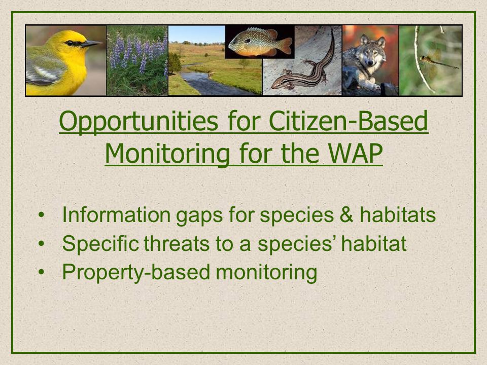 Opportunities for Citizen-Based Monitoring for the WAP Information gaps for species & habitats Specific threats to a species' habitat Property-based m