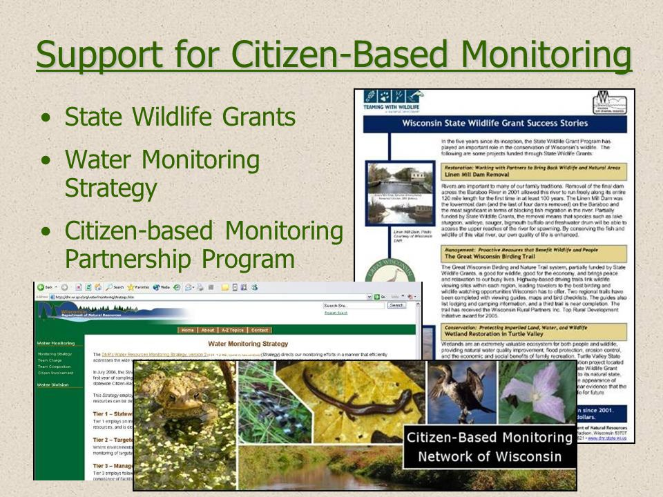 Support for Citizen-Based Monitoring State Wildlife Grants Water Monitoring Strategy Citizen-based Monitoring Partnership Program