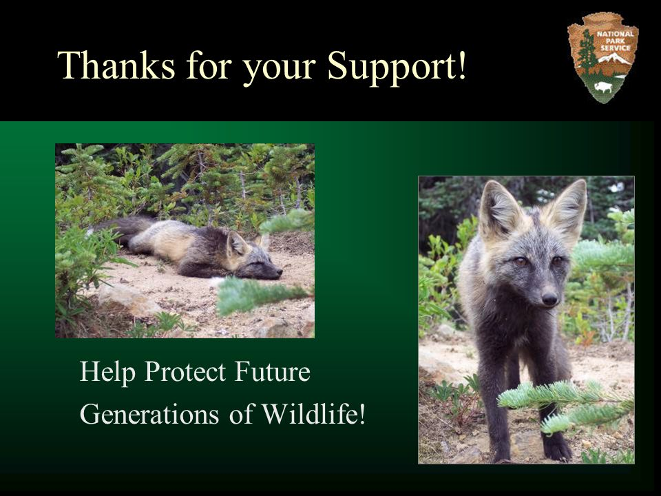 Thanks for your Support! Help Protect Future Generations of Wildlife!