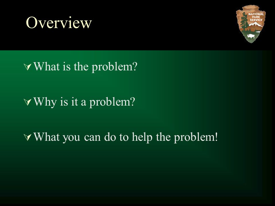 Overview  What is the problem  Why is it a problem  What you can do to help the problem!