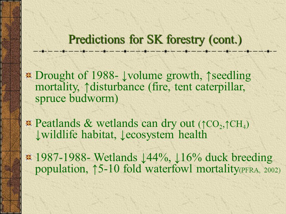 Drought of 1988- ↓volume growth, ↑seedling mortality, ↑disturbance (fire, tent caterpillar, spruce budworm) Peatlands & wetlands can dry out (↑CO 2,↑CH 4 ) ↓wildlife habitat, ↓ecosystem health 1987-1988- Wetlands ↓44%, ↓16% duck breeding population, ↑5-10 fold waterfowl mortality (PFRA, 2002) Predictions for SK forestry (cont.)