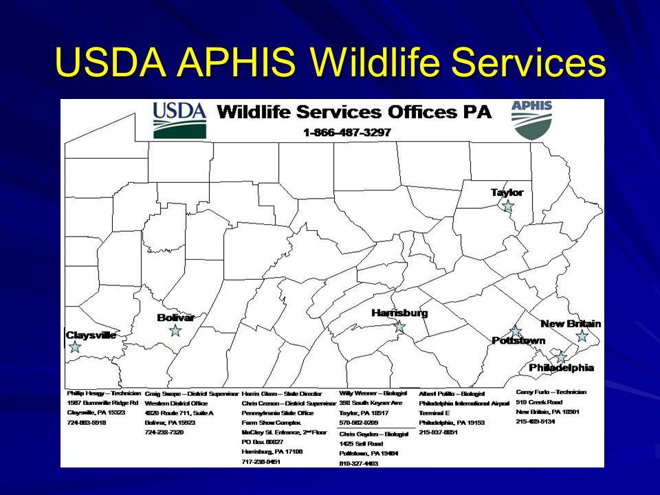 USDA APHIS Wildlife Services