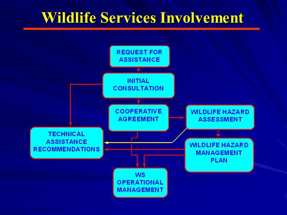 Wildlife Services Involvement