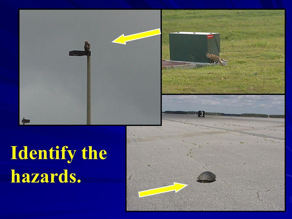 Identify the hazards.