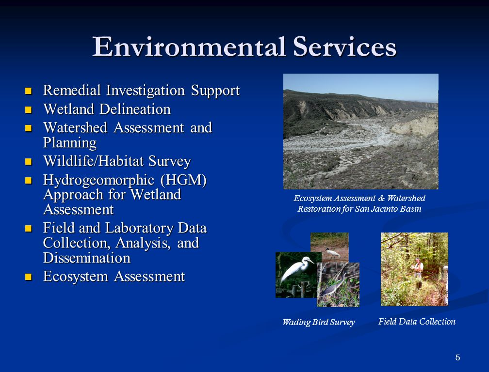 5 Environmental Services Remedial Investigation Support Remedial Investigation Support Wetland Delineation Wetland Delineation Watershed Assessment an