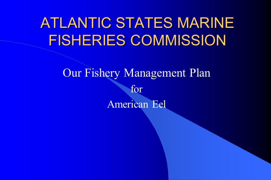 ATLANTIC STATES MARINE FISHERIES COMMISSION Our Fishery Management Plan for American Eel
