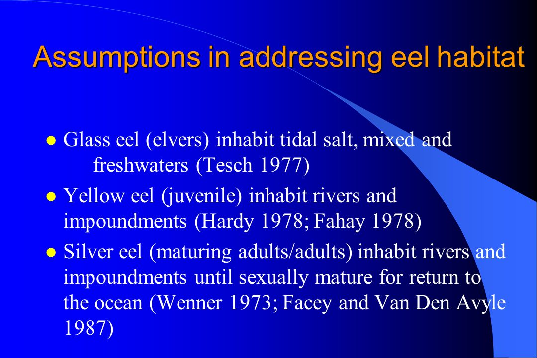 Assumptions in addressing eel habitat l Glass eel (elvers) inhabit tidal salt, mixed and freshwaters (Tesch 1977) l Yellow eel (juvenile) inhabit rivers and impoundments (Hardy 1978; Fahay 1978) l Silver eel (maturing adults/adults) inhabit rivers and impoundments until sexually mature for return to the ocean (Wenner 1973; Facey and Van Den Avyle 1987)