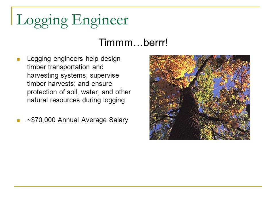 Logging Engineer Logging engineers help design timber transportation and harvesting systems; supervise timber harvests; and ensure protection of soil, water, and other natural resources during logging.