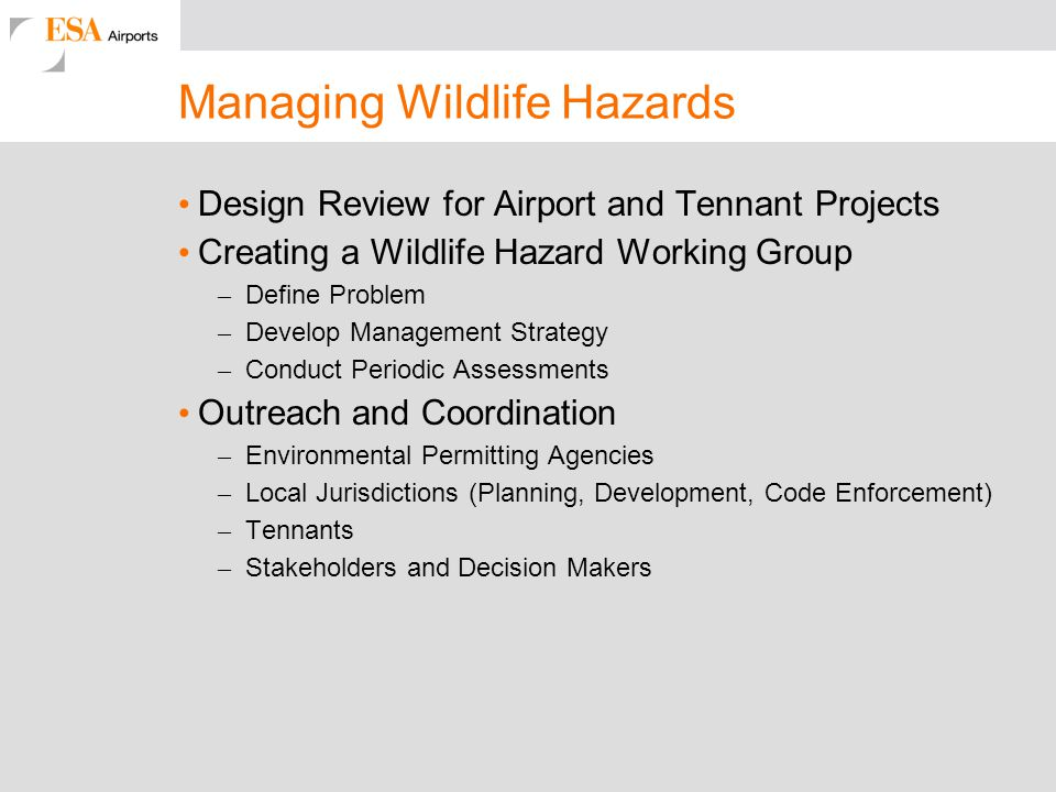 Managing Wildlife Hazards Design Review for Airport and Tennant Projects Creating a Wildlife Hazard Working Group – Define Problem – Develop Managemen