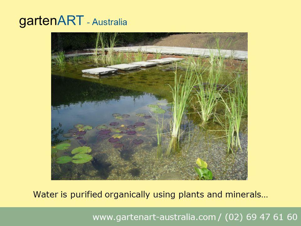 gartenART - Australia www.gartenart-australia.com / (02) 69 47 61 60 Water is purified organically using plants and minerals…