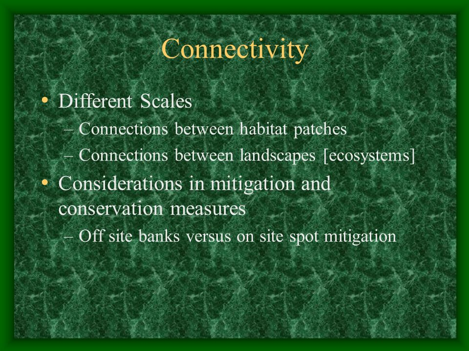 Connectivity Different Scales –Connections between habitat patches –Connections between landscapes [ecosystems] Considerations in mitigation and conservation measures –Off site banks versus on site spot mitigation