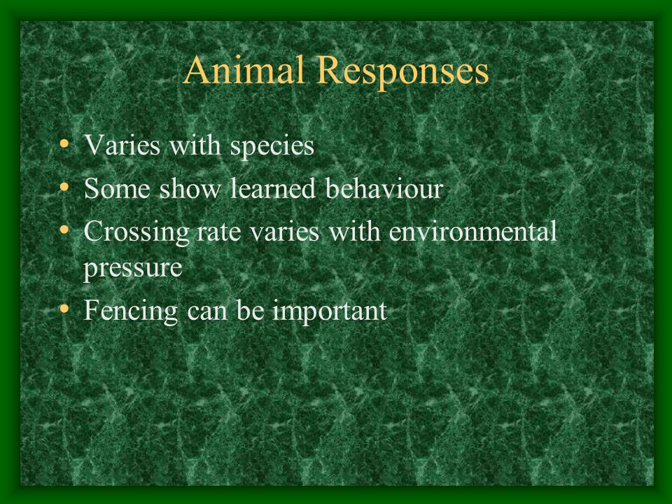 Animal Responses Varies with species Some show learned behaviour Crossing rate varies with environmental pressure Fencing can be important