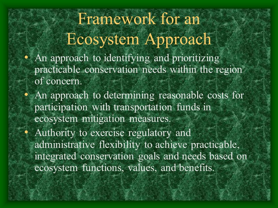 Framework for an Ecosystem Approach An approach to identifying and prioritizing practicable conservation needs within the region of concern.