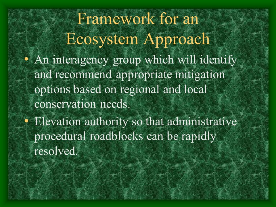 Framework for an Ecosystem Approach An interagency group which will identify and recommend appropriate mitigation options based on regional and local
