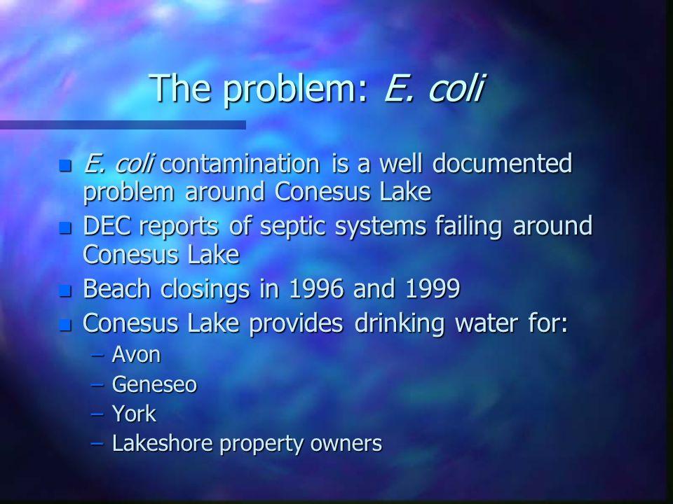 The problem: E. coli n E.
