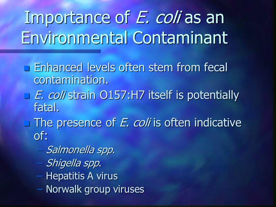 Importance of E.