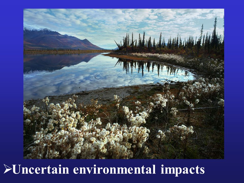  Uncertain environmental impacts