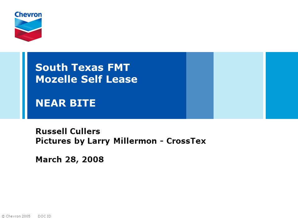 DOC ID © Chevron 2005 South Texas FMT Mozelle Self Lease NEAR BITE Russell Cullers Pictures by Larry Millermon - CrossTex March 28, 2008